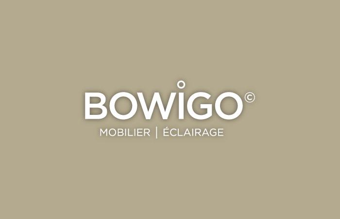 bowigo-pro-accueil